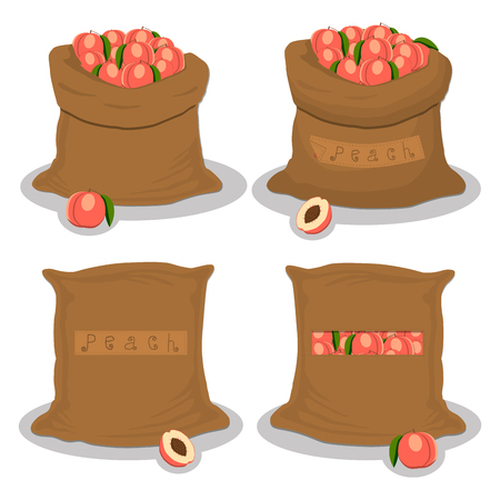 Vector icon illustration logo for bags filled with fruit peach, storage in sacks. Peach pattern consisting of ripe food, raw product on open Sack. Tasty fruit peach from eco sack, full baggy bag.