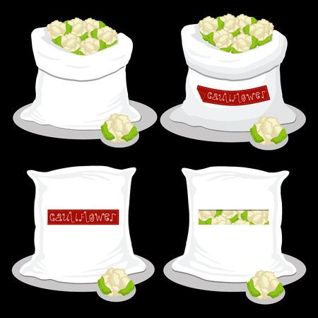 Vector illustration for bags filled with vegetable cauliflower, storage in sacks. Cauliflower pattern consisting of ripe food, raw product on open Sack. Tasty cauliflower from eco sack,full baggy bag