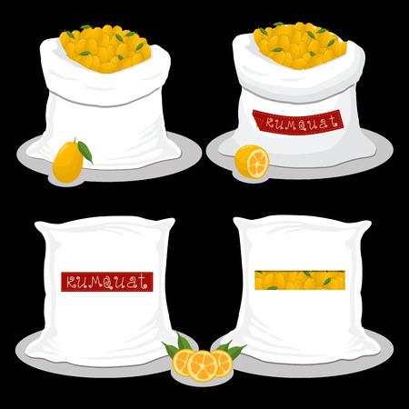 Vector icon illustration logo for bags filled with fruit kumquat, storage in sacks. Kumquat pattern consisting of ripe food, raw product on open Sack. Tasty kumquat from eco sack, full baggy bag.