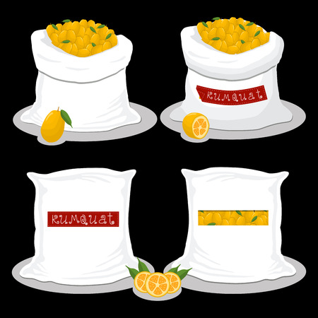 Vector icon illustration logo for bags filled with fruit kumquat, storage in sacks. Kumquat pattern consisting of ripe food, raw product on open Sack. Tasty kumquat from eco sack, full baggy bag.