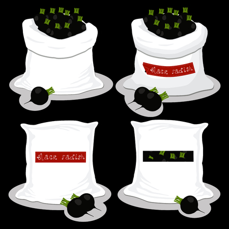 Vector illustration for bags filled with vegetable black radish, storage in sacks. Radish pattern consisting of ripe food, raw product on open Sack. Tasty fruit radish from eco sack, full baggy bag.