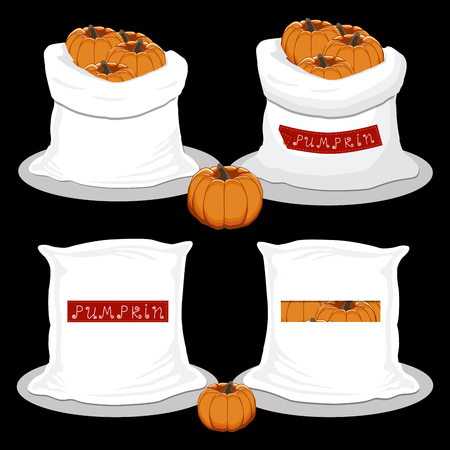 Vector illustration for bags filled with vegetable orange pumpkin, storage in sacks. Pumpkin pattern consisting of ripe food, raw product on open Sack. Tasty pumpkin from eco sack, full baggy bag.