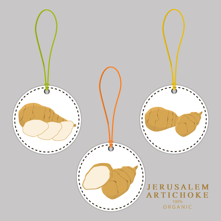 Vector icon illustration logo for whole ripe vegetable jerusalem artichoke, slice half root. Artichoke pattern consisting of natural design tropical tasty food. Eat sweet fresh Jerusalem artichoke.