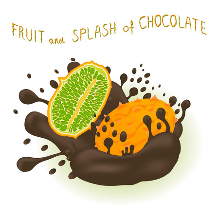 Illustration on theme falling kiwano at splash sugary chocolate. Kiwano pattern consisting of cute meal for healthy beverage with chocolate splash. Splash kiwano in exclusive chocolate menu gourmet. Ilustração