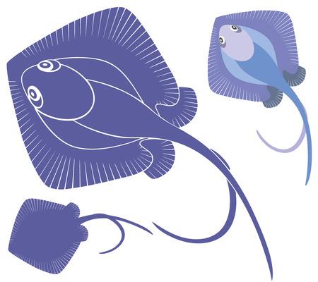 stingray: Stingray Illustration
