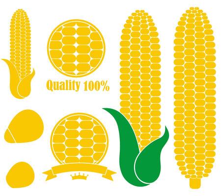 Corn Reklamní fotografie - 32785892