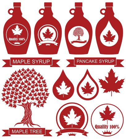 Maple Syrup Illustration