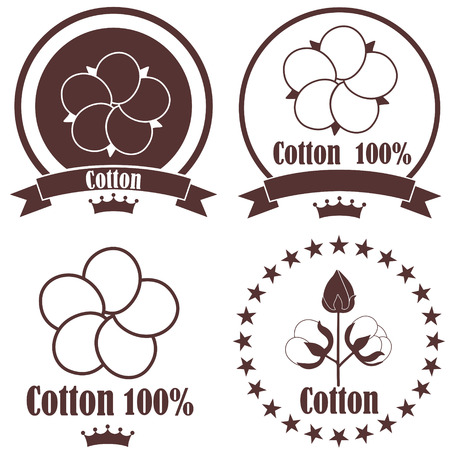 cotton plant: Cotton
