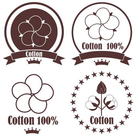 cotton flower: Cotton