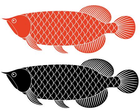 Dragon fish Illustration