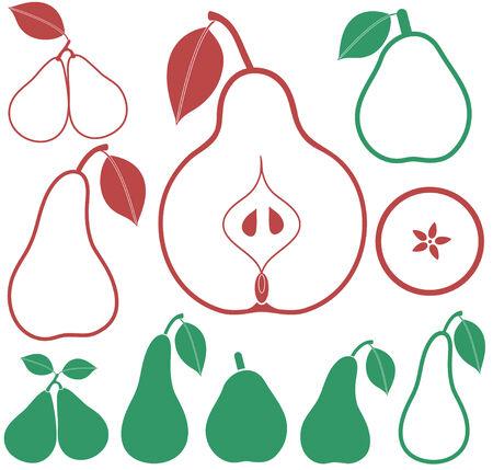 vegetarianism: Pear illustration
