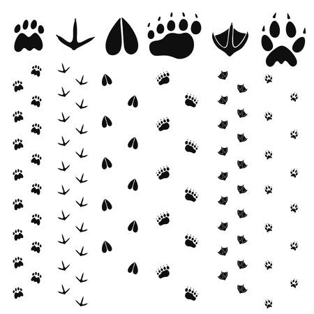paw print: Paw Print Illustration