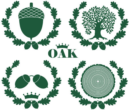 oak wreath: Oak illustration