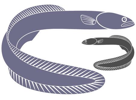 eel: Eel