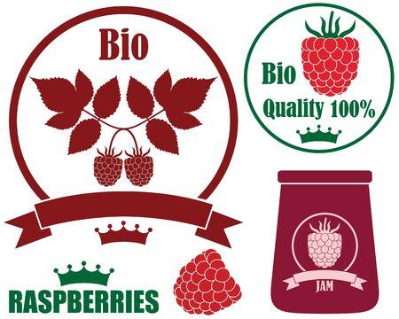 burgundy ribbon: Raspberries