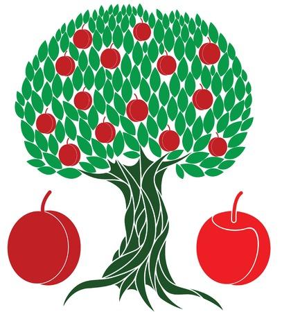 vegetarianism: Peach tree