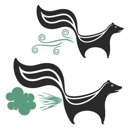 mofeta: Skunk