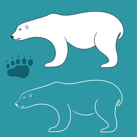 bear footprints: White Bear