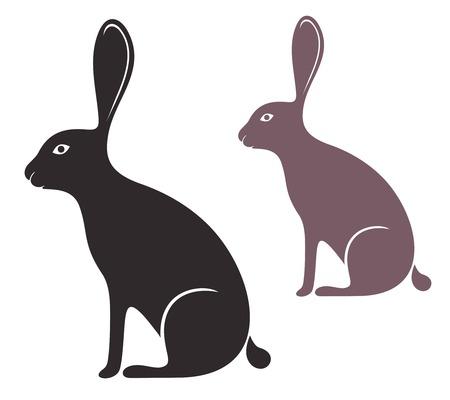 hare: Liebre