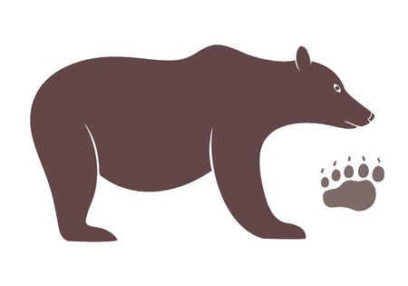 Bear Reklamní fotografie - 38305531