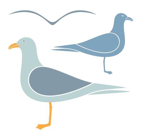 quarry: Seagull Illustration