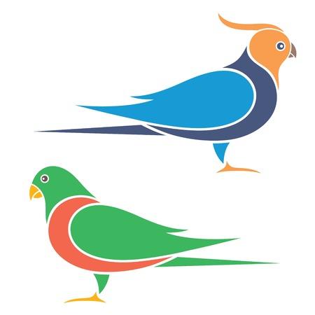 lovebird: Parrot
