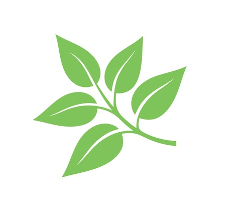 tea leaves: Tea leaves illustration