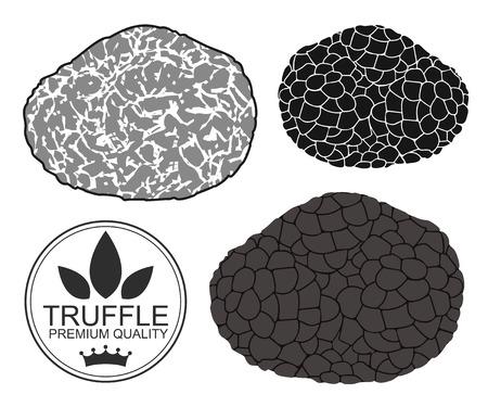 truffle: Truffle Illustration