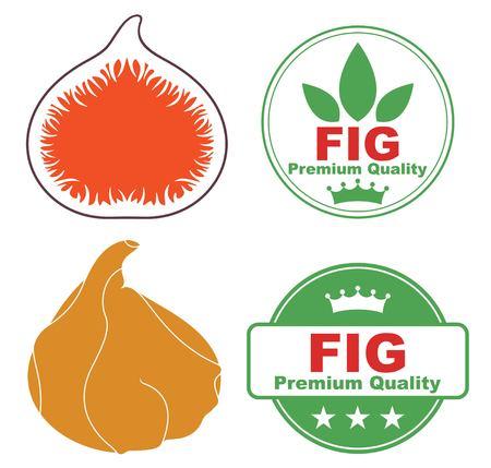 fig: Fig