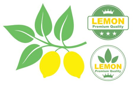citrus tree: Lim?n