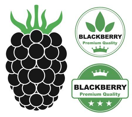 dewberry: Blackberry