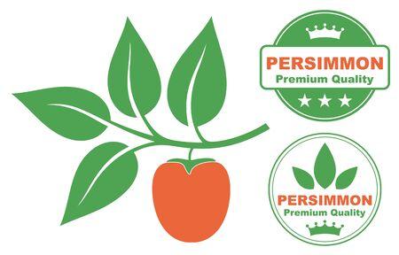 persimmon: persimmon Illustration