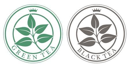 green and black: tea Illustration