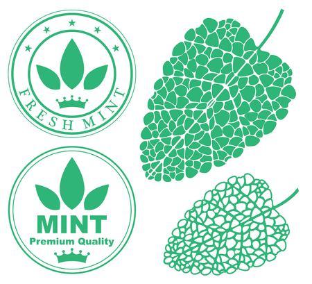 spearmint: mint
