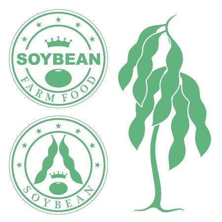 soya bean plant: soybean