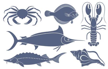 sturgeon: seafood Illustration