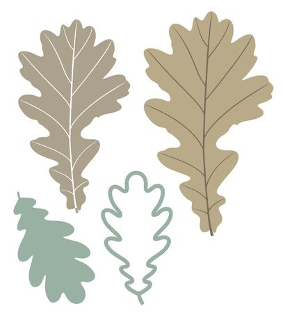 chestnut tree: oak leaf