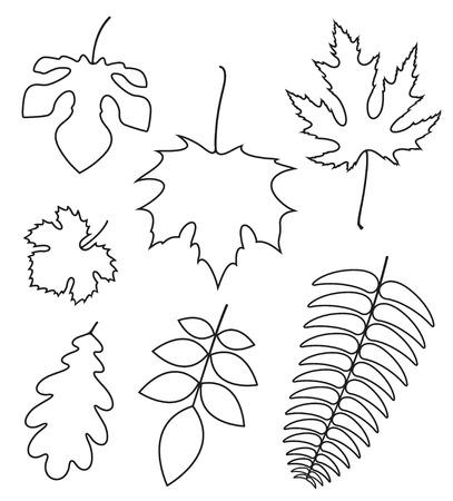 Leaf. Outline
