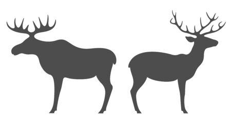Elk. Deer Illustration