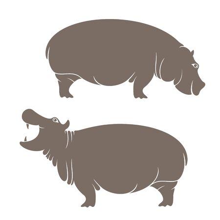 hippopotamus: hippopotamus Vectores