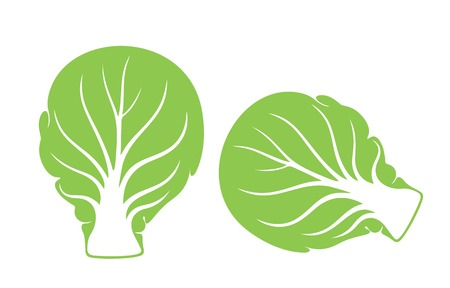 brussels sprout Illustration