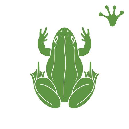 Green frog. Abstract frog on white background Ilustração