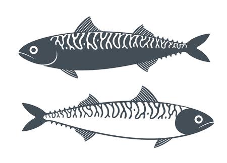 Mackerel set. Isolated mackerel on white background