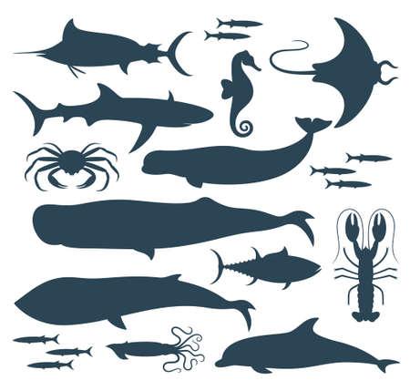 cachalot: Fish silhouette.