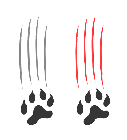 Pair of paw print on a white background.