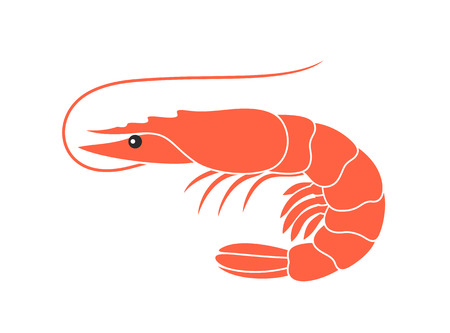 Shrimp vector illustration on white background. Ilustração