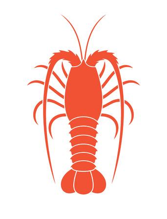 Spiny lobster. Illustration
