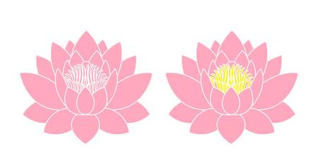 Lotus flower. Isolated lotus on white background
