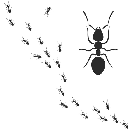 Ants Vector illustration on white background.