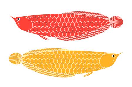 Arowana concept vector illustration.